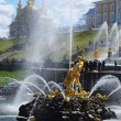 Grand Cascade Fountains At Peterhof Palace garden, St. Petersbur — Stock Photo #46295275