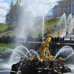 Grand cascade fontänerna på peterhof palatset trädgård, st. petersbur — Stockfoto