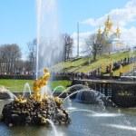 fuentes de la gran cascada en el Palacio de peterhof jardín, San petersbur — Foto de Stock