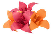 Origami flowers — Stock Photo