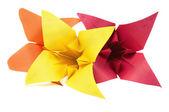 Flores de origami — Foto de Stock