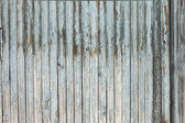 Grungy white background of natural wood — Stock Photo
