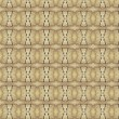 Vintage shabby background with classy patterns — Stock Photo #14393009