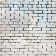 fondo blanco Vintage brickwall — Foto de Stock   #22303319