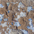 Grungy concrete wall background — Stock Photo