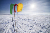 Flags on the background of winter sky — Stock Photo
