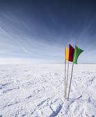 Vlajky na pozadí zimní oblohy — Stock fotografie