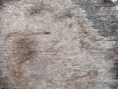 Dark Wood Texture Background — Stock Photo
