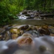 Mountain River in the wood — Stock Photo #35373595