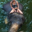 Girl on an elephant in water — Stock Photo