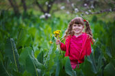 Little girl in the grass — Stock Photo