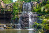 Waterfall in the jungle — Stock Photo