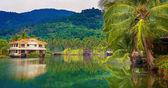 Fille sur le lac tropical pier — Photo