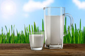 Glass and carafe with milk — Foto Stock