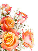 Orange roses with white flowers — Stock Photo