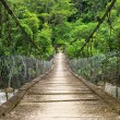 The suspension foot bridge in the jungle of Ecuador — Stock Photo