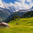 Murren in summer, famous Swiss resort — Stock Photo