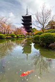 Aan-ji pagode in kyoto, japan — Stockfoto