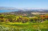 View of the sea of Galilee Kineret — Stock Photo