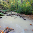 Flow on river — Stock Photo #36031693