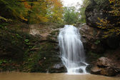Forest waterfall — Stock Photo