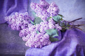 Bouquet of lilacs on the table — Stock Photo