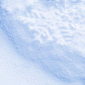 Snowflake on the snow. — Stock Photo