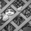 Little baby boy  looking through blue fence — Stock Photo #42961539
