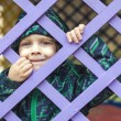 Little baby boy  looking through blue fence — Stock Photo #43420703