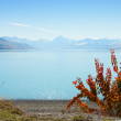 beautiful view of lake tekapo in autumn — Stock Photo