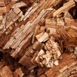 Rotten wood — Stock Photo