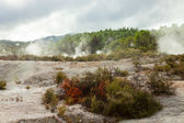 Landscape with steaming hot springs — Stock Photo