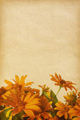 Vinobraní papír textury. — Stock fotografie