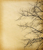 Old paper textures. tree without leaves — Stock Photo