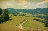 Rural road in retro style — Стоковое фото