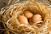 Chicken eggs in the straw — Stock Photo