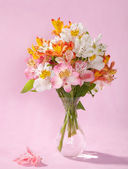 Bouquet of Alstroemeria — Stock Photo
