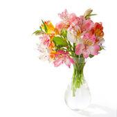 Bouquet of Alstroemeria flowers — Stock Photo