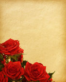 Old paper textures with red roses — Stock Photo