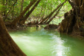 River in tropical forest,Umphang Thi Lo Su Waterfall,Thailand — Stock Photo