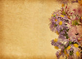 Beige paper with light violet flowers — Stock Photo