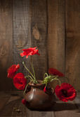 Poppies in clay pot — Stock Photo