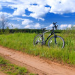 Bicycle in summer rural scene — Stock Photo #1024407