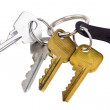 Bunch of keys — Stock Photo #1027011