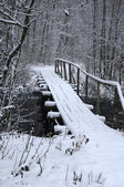 Bridge Over River in the Winter — Stock Photo