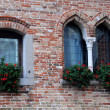 Medieval Castle Windows — Stock Photo