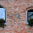 Windows of Medieval Castle — Stock Photo