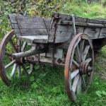 Old Cart — Stock Photo #7406158
