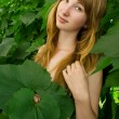 Stock Photo: Young girl in leaves of grapes 4790