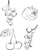Vector. Berry. Fruit set — Stock Vector